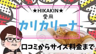 ヒカキンさん購入カリカリーナ猫の爪とぎソファー